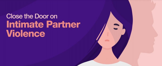 domestic partner violence